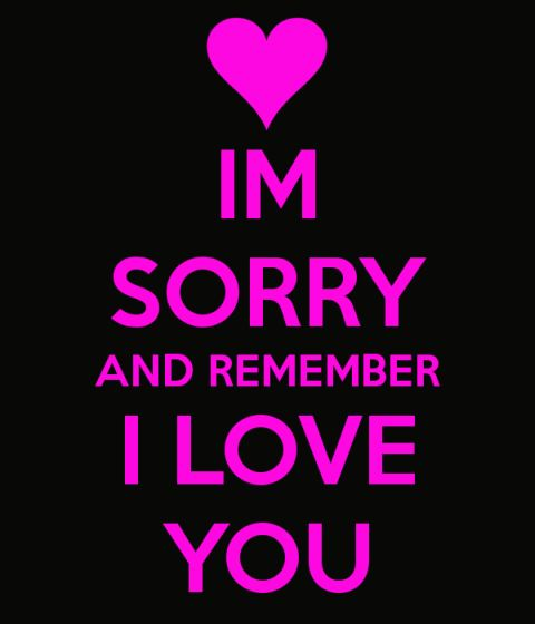 im-sorry-and-remember-i-love-you