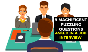 9 Magnificent Puzzling Questions Asked in a Job Interview Revealed