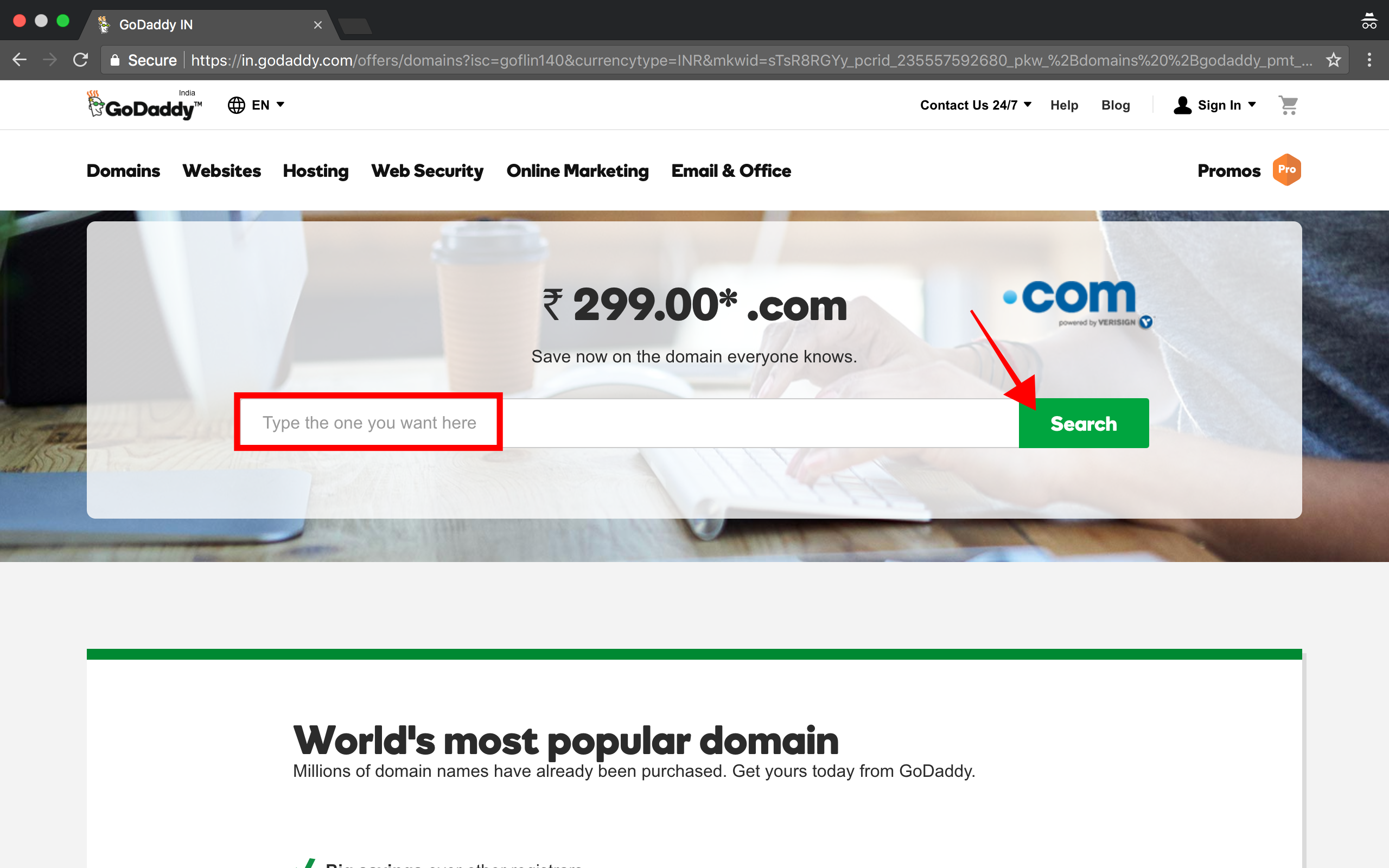 type-the-domain-name-and-click-on-search-button