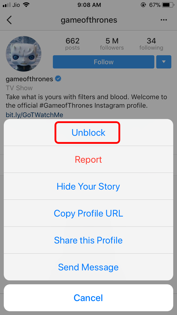 click-on-unblock-to-see-the-posts-of-that-instagram-profile