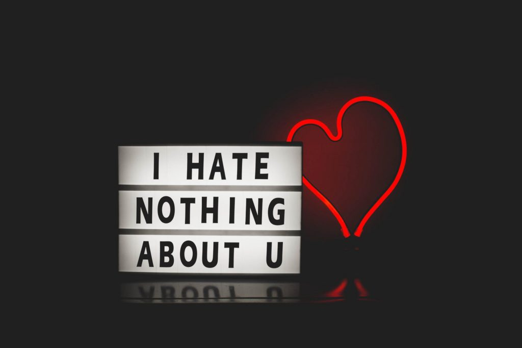 i-hate-nothing-about-you-love-whatsapp-dp